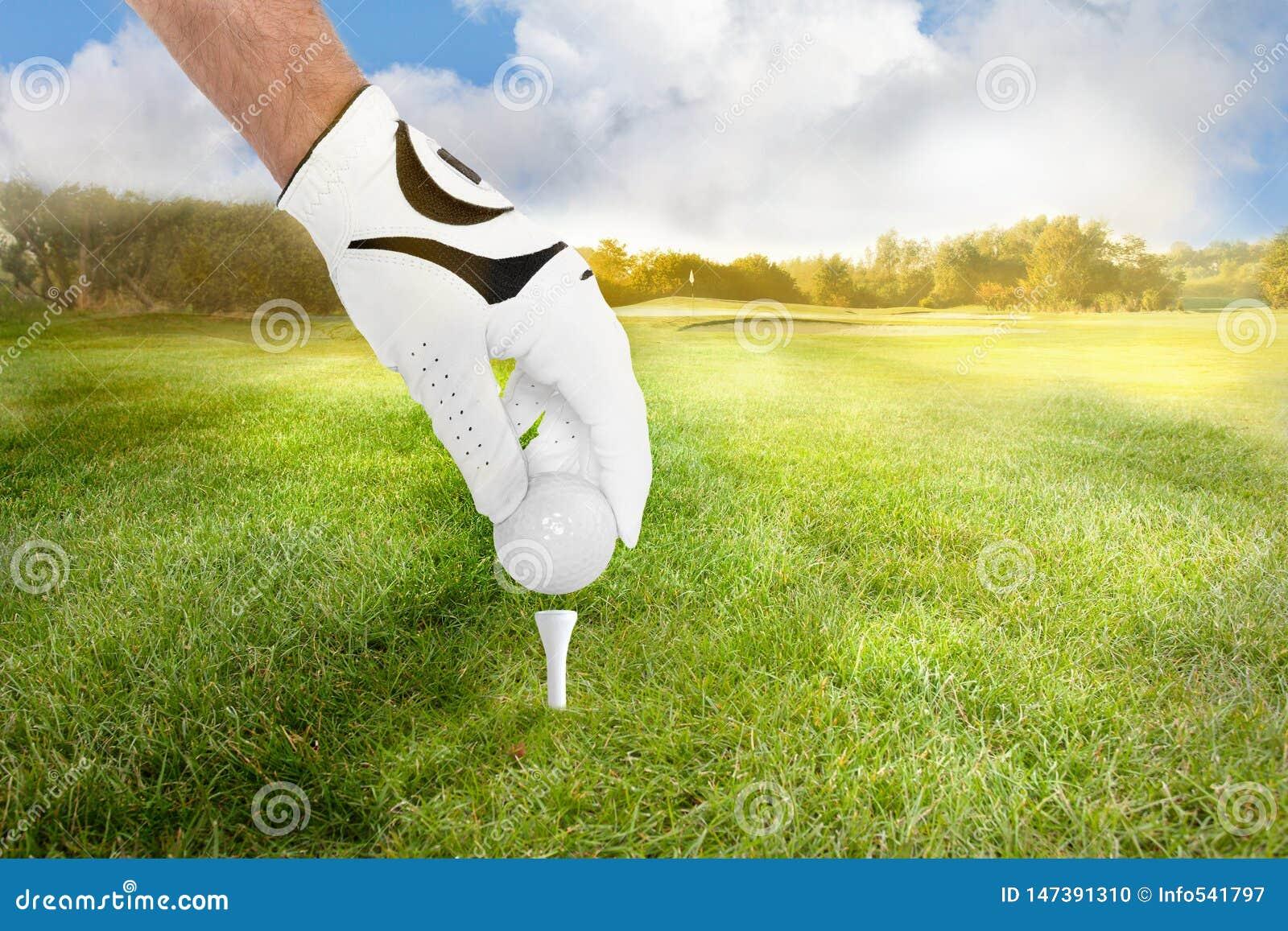 Mano di una palla da golf dei posti del giocatore di golf sul T sul tratto navigabile