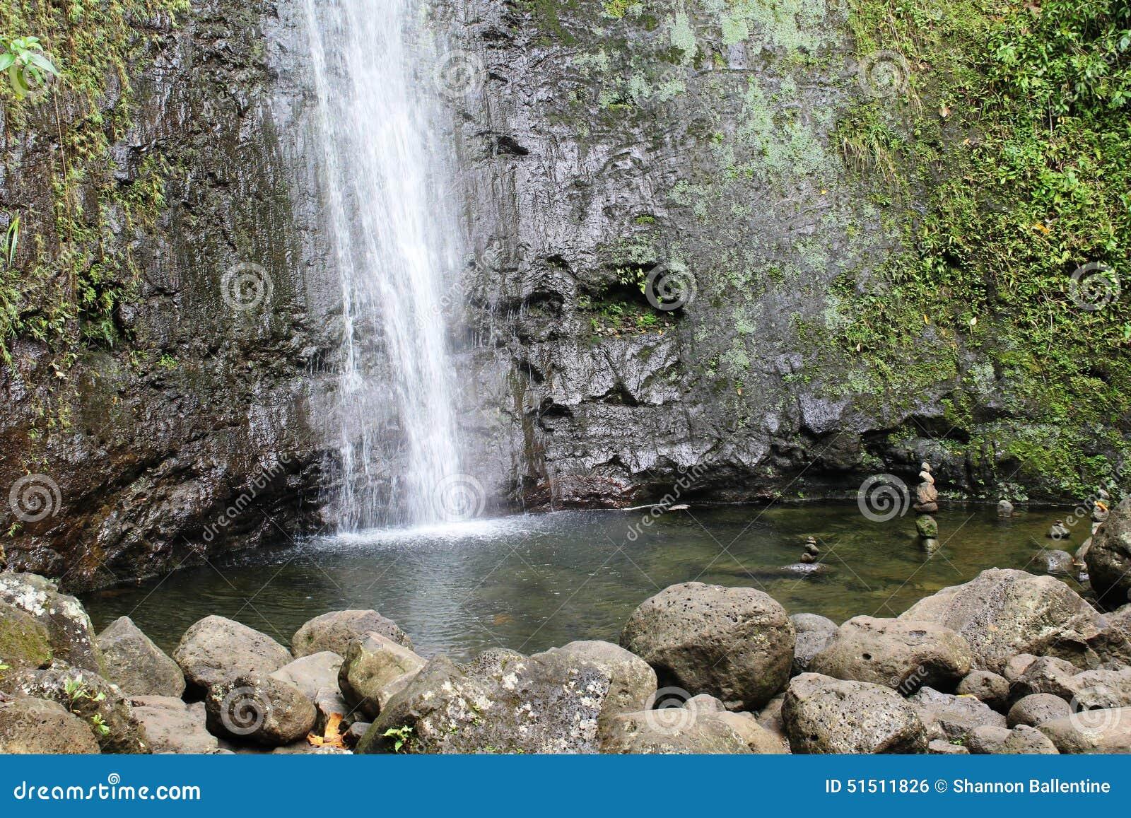 Manoa Falls Pool