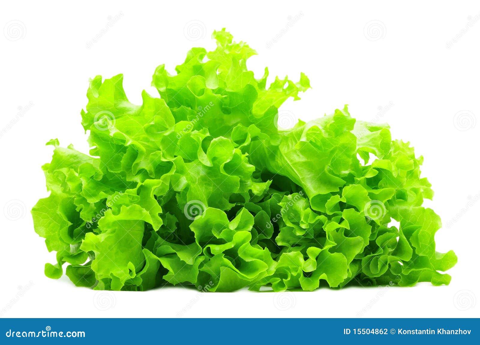 Manojo de ensalada verde aislado sobre blanco