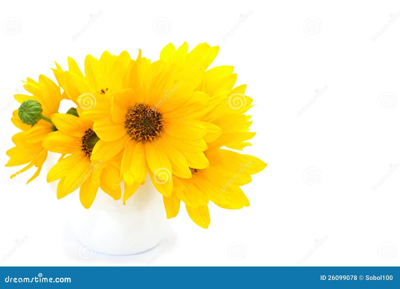 Fondos De Pantalla Flores Rosadas Crisantemo Fondo: Manojo De Flores Amarillas En El Fondo Blanco Fotos De