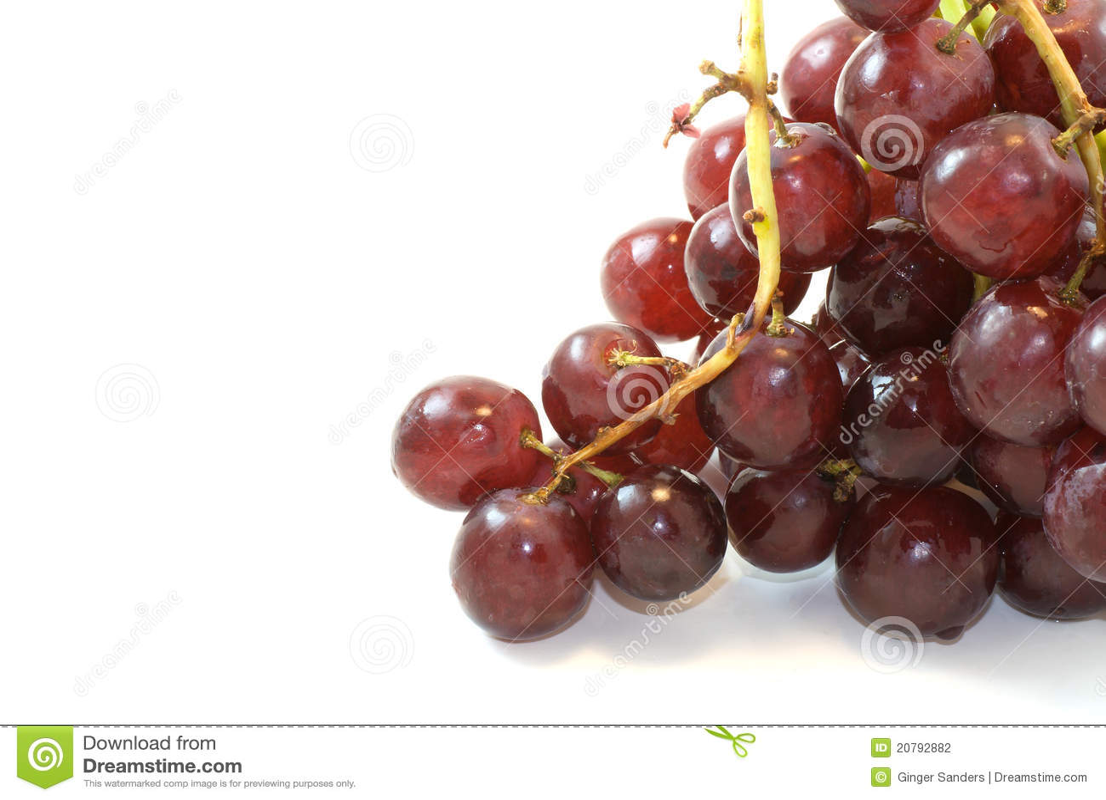 Manojo de las uvas rojas en el fondo blanco