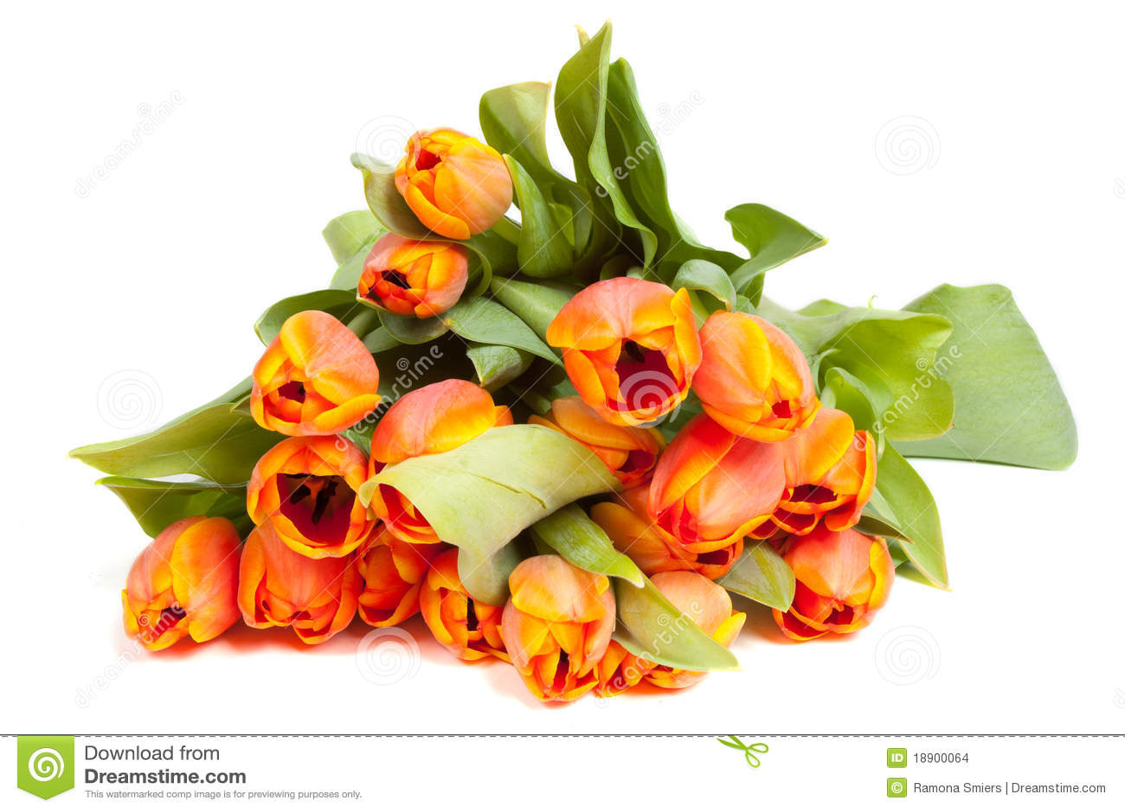 Manojo de tulipanes amarillo naranja foto de archivo - Amarillo naranja ...