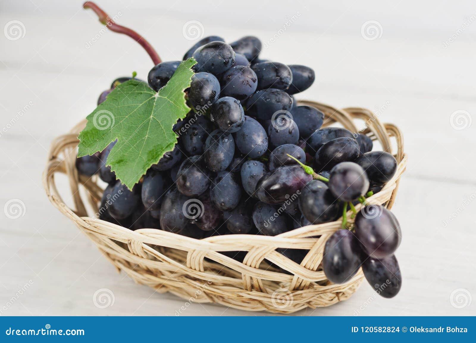 Manojo de uvas azules maduras frescas con la hoja verde en cesta de mimbre en tablones blancos de madera viejos