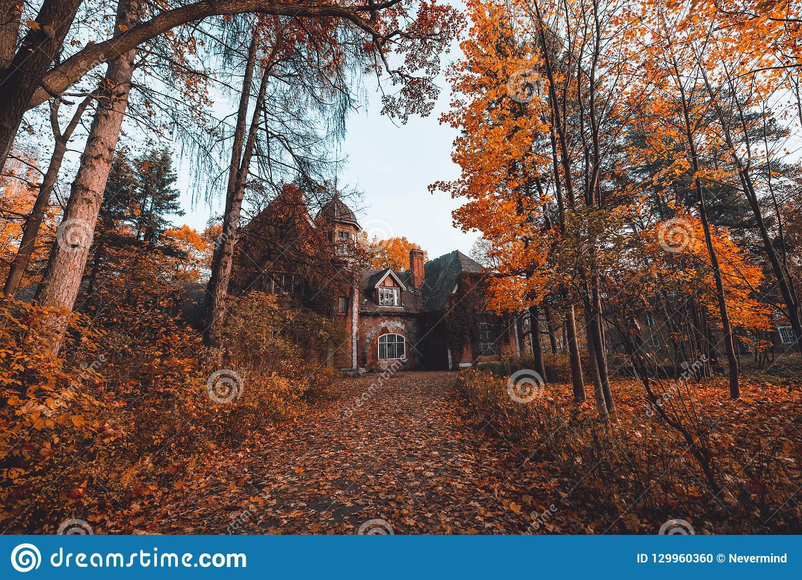 Manor house with trees in autumn colors and fall trees. Old Victorian Haunted House with ghosts. Abandoned house in autumn wood