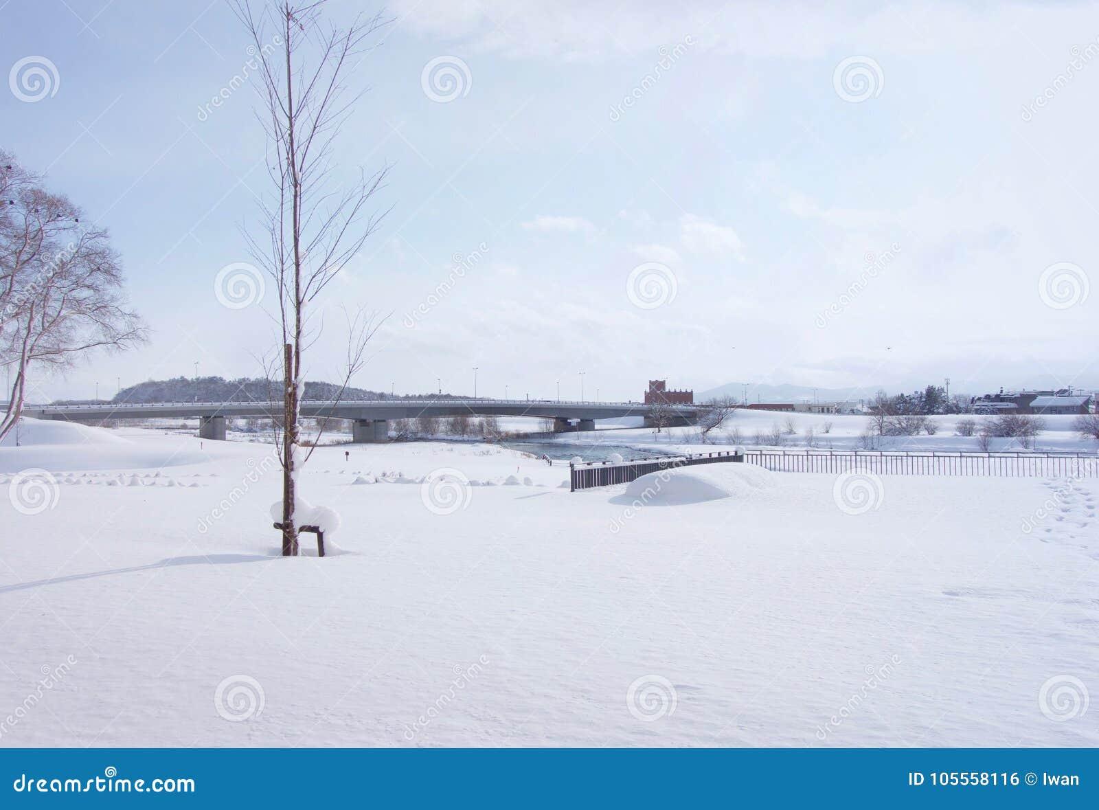 Manta de la nieve en Asahikawa, Hokkaido, Japón