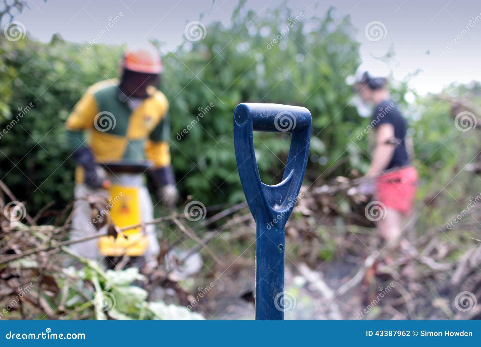 Mantenimiento del jardín