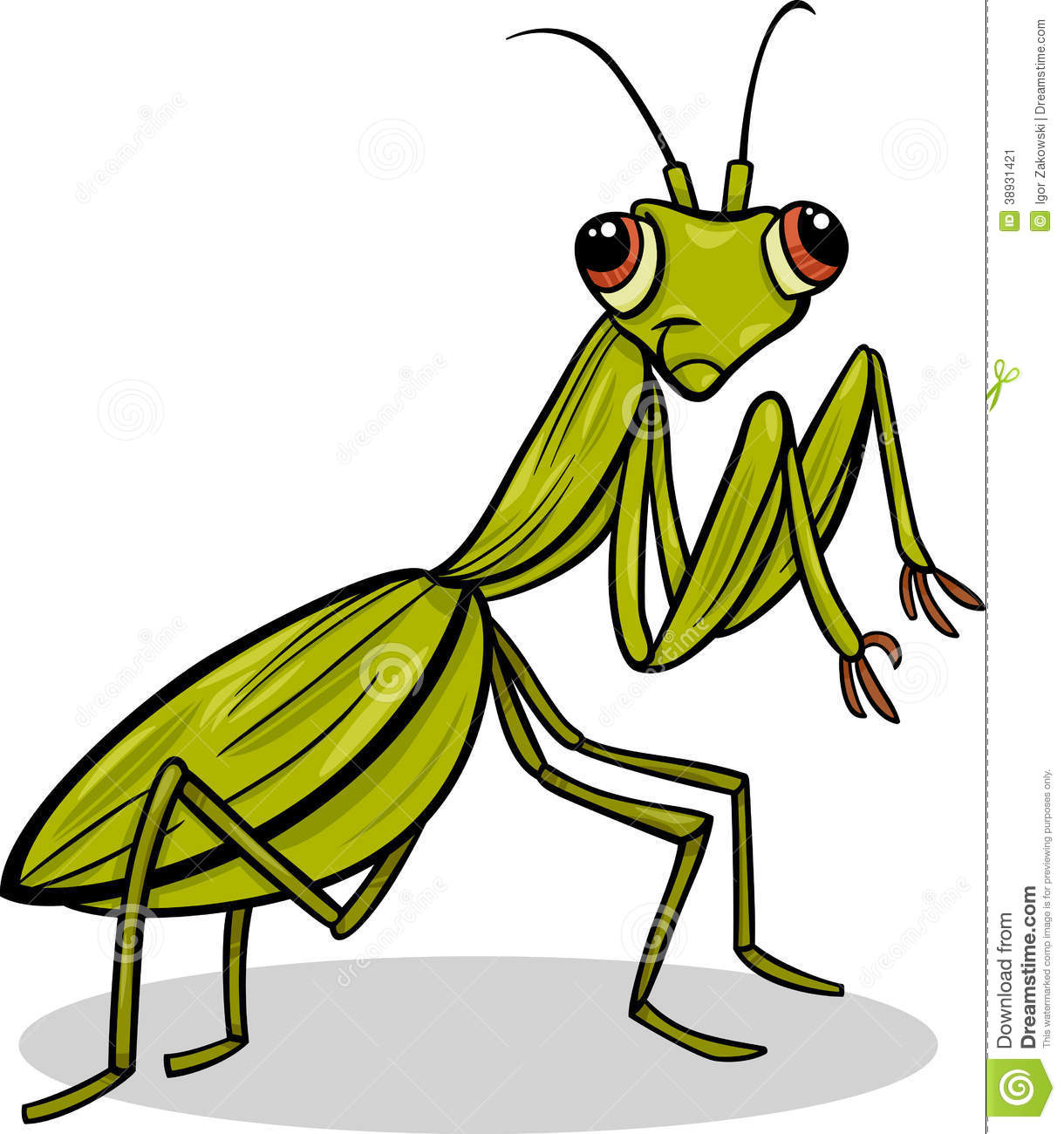 Mantis Insect Cartoon Illustration Stock Vector - Image: 38931421