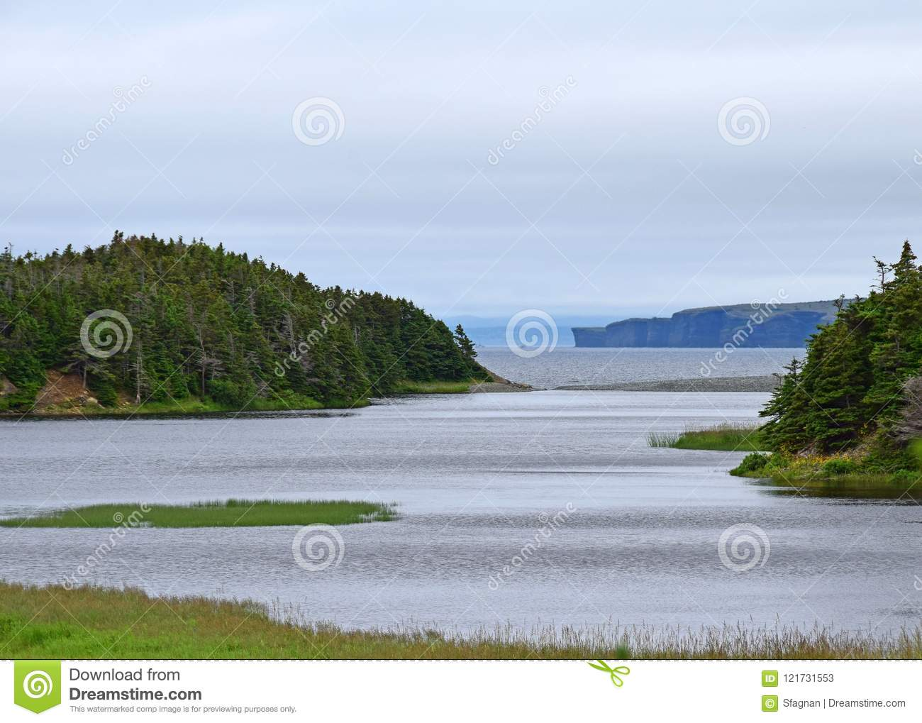 Manuels River in Conception Bay South