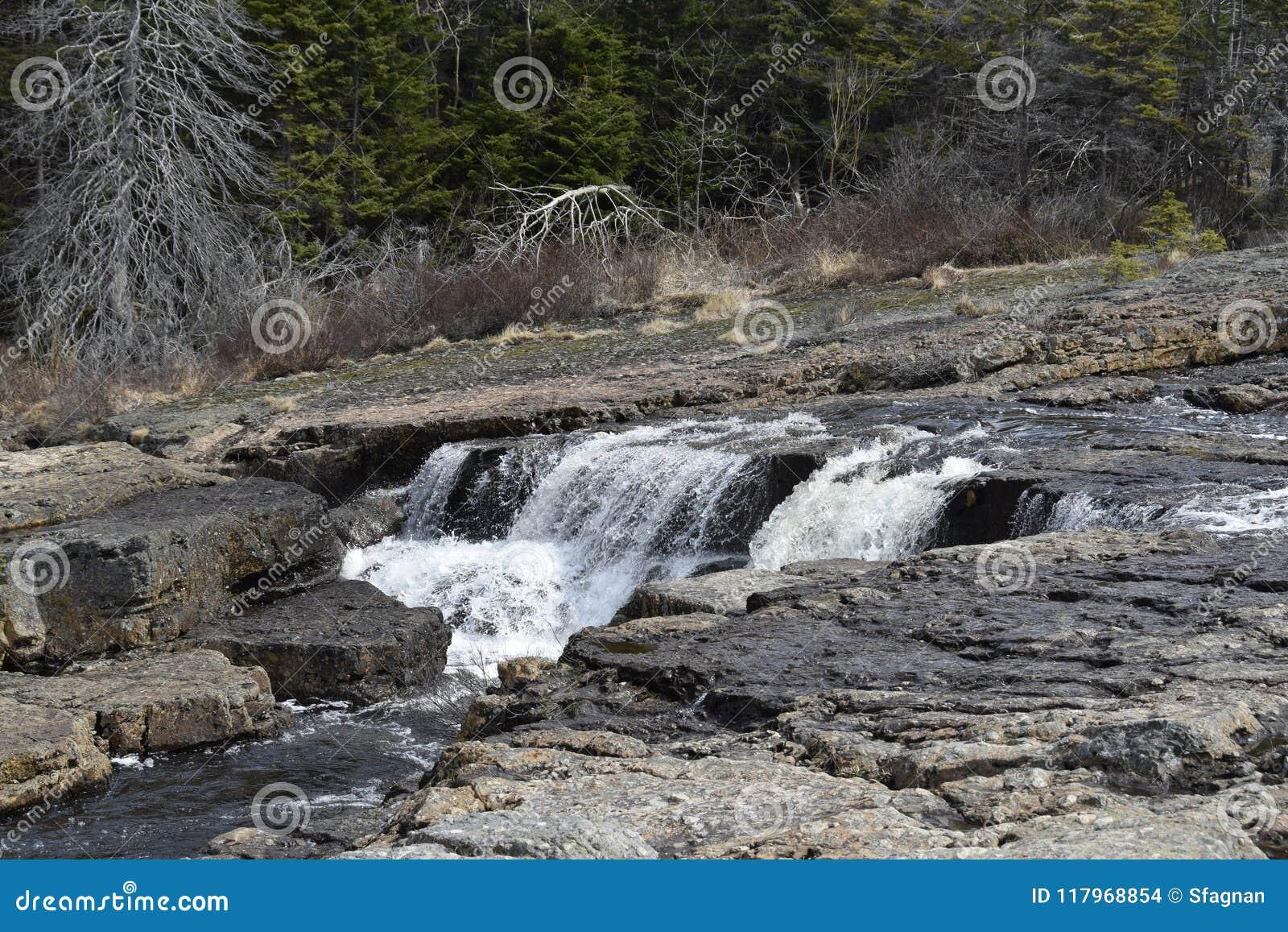 Manuels River scenic landscape in Spring