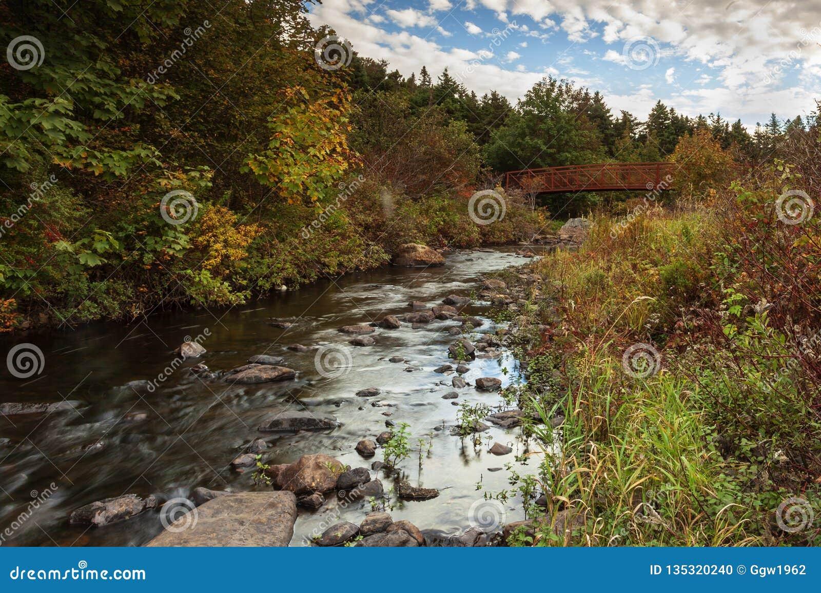 Manuels River walking trail