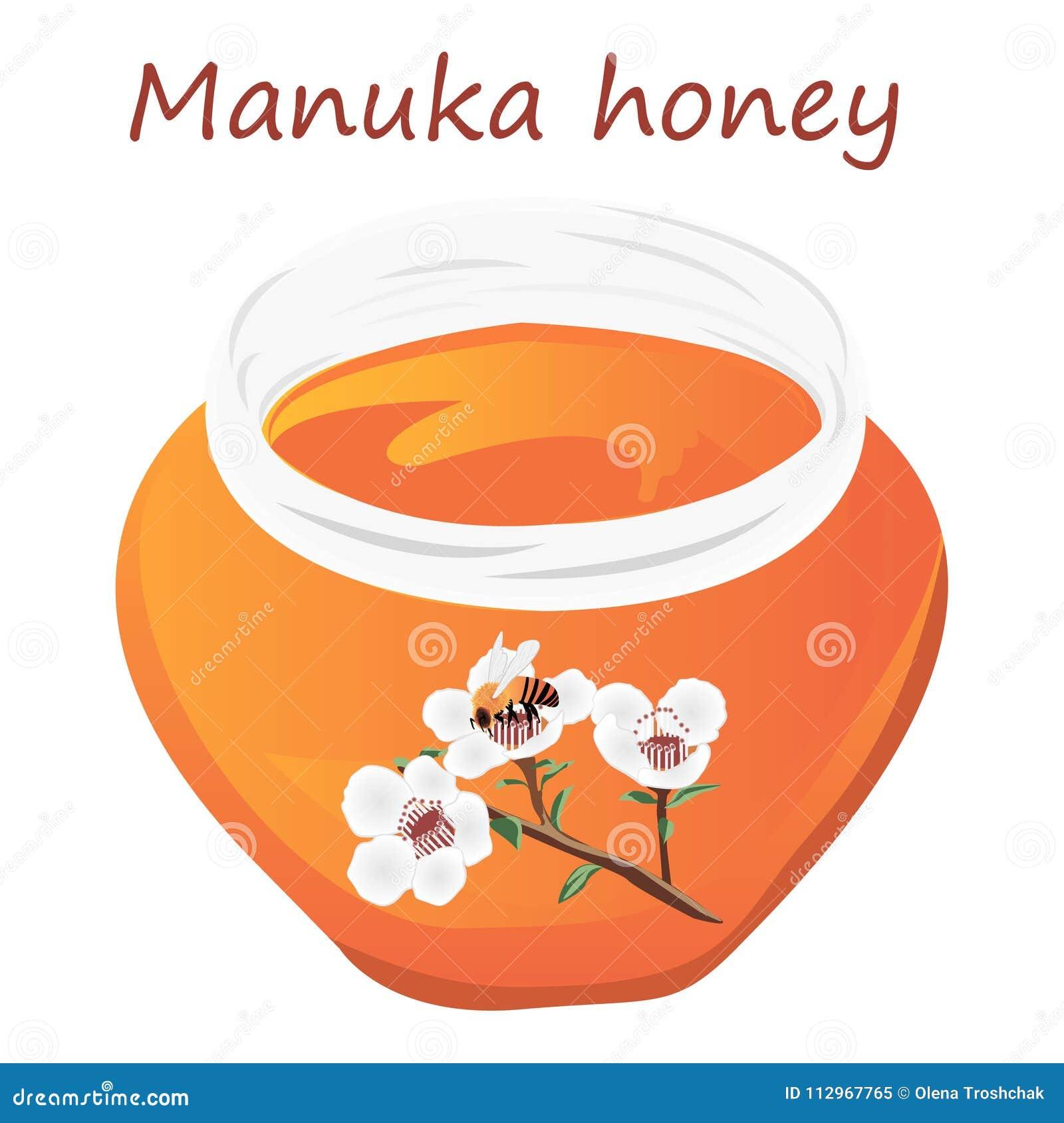 Manuka miód i A śniadanio-lunch manuka kwitnienie i pszczoła