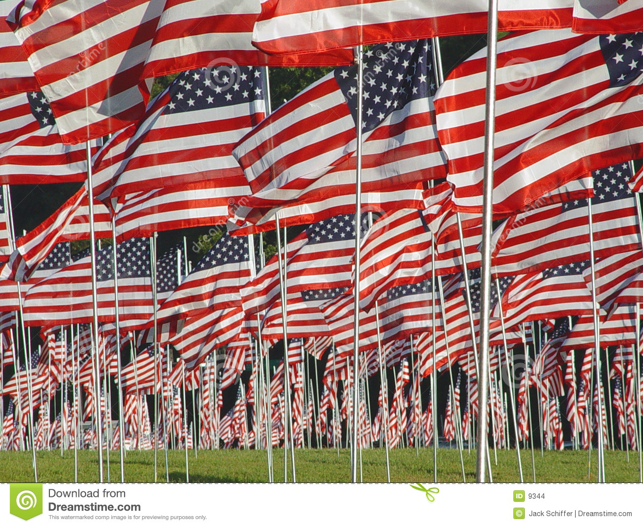 Many American Flags In The Grass Stock Photo Image 9344
