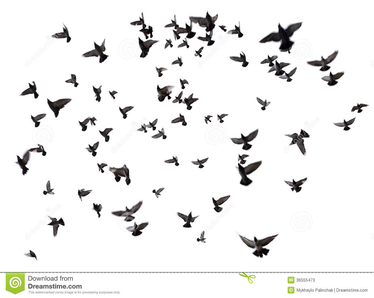 Silhouettes of pigeons. Many birds flying in the sky. Motion blur ...Dove Bird Drawing Tattoo