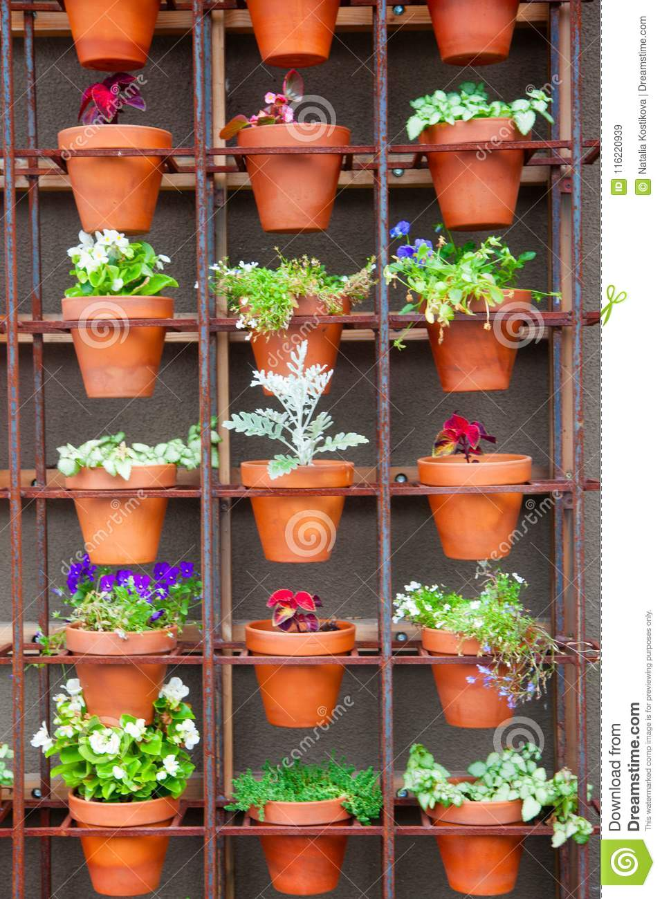 Dreamstime.com & Many Clay Flower Pots With Indoor Plants. Stock Image ...