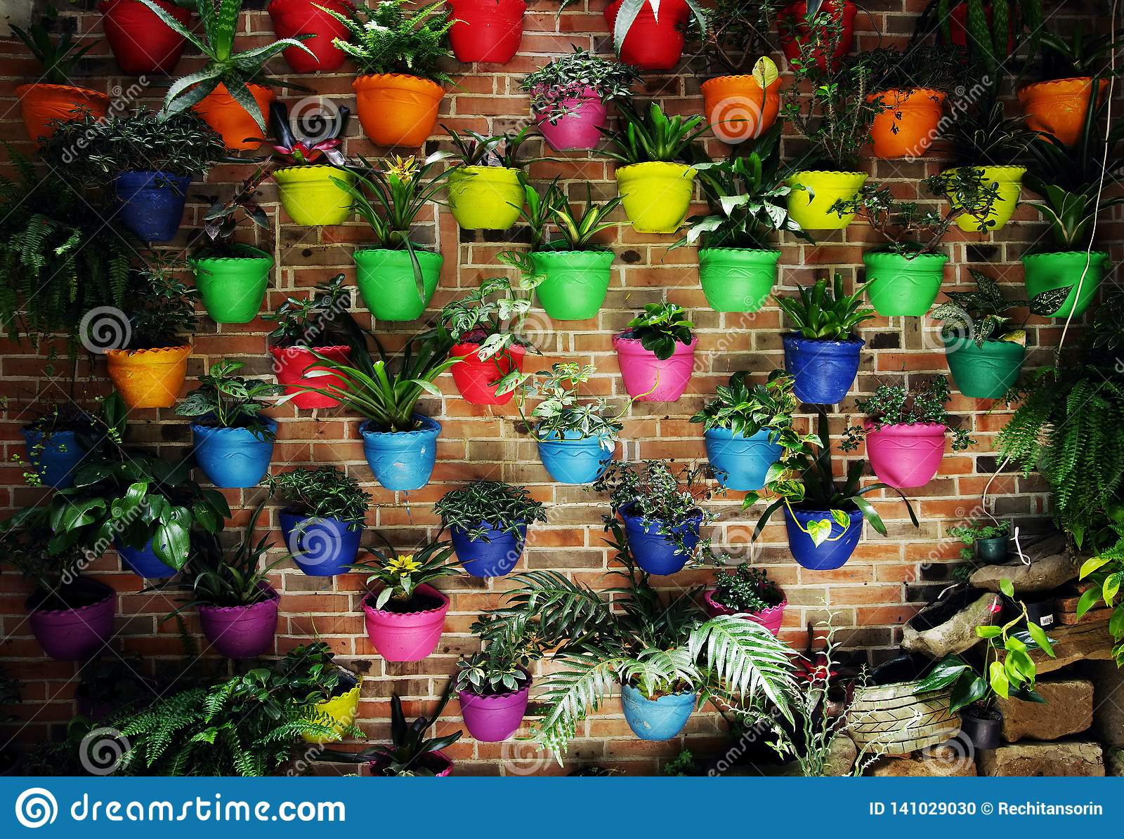 Potted Multicoloured Flowers On A Wall Stock Photo Image Of Pots Decoration 141029030