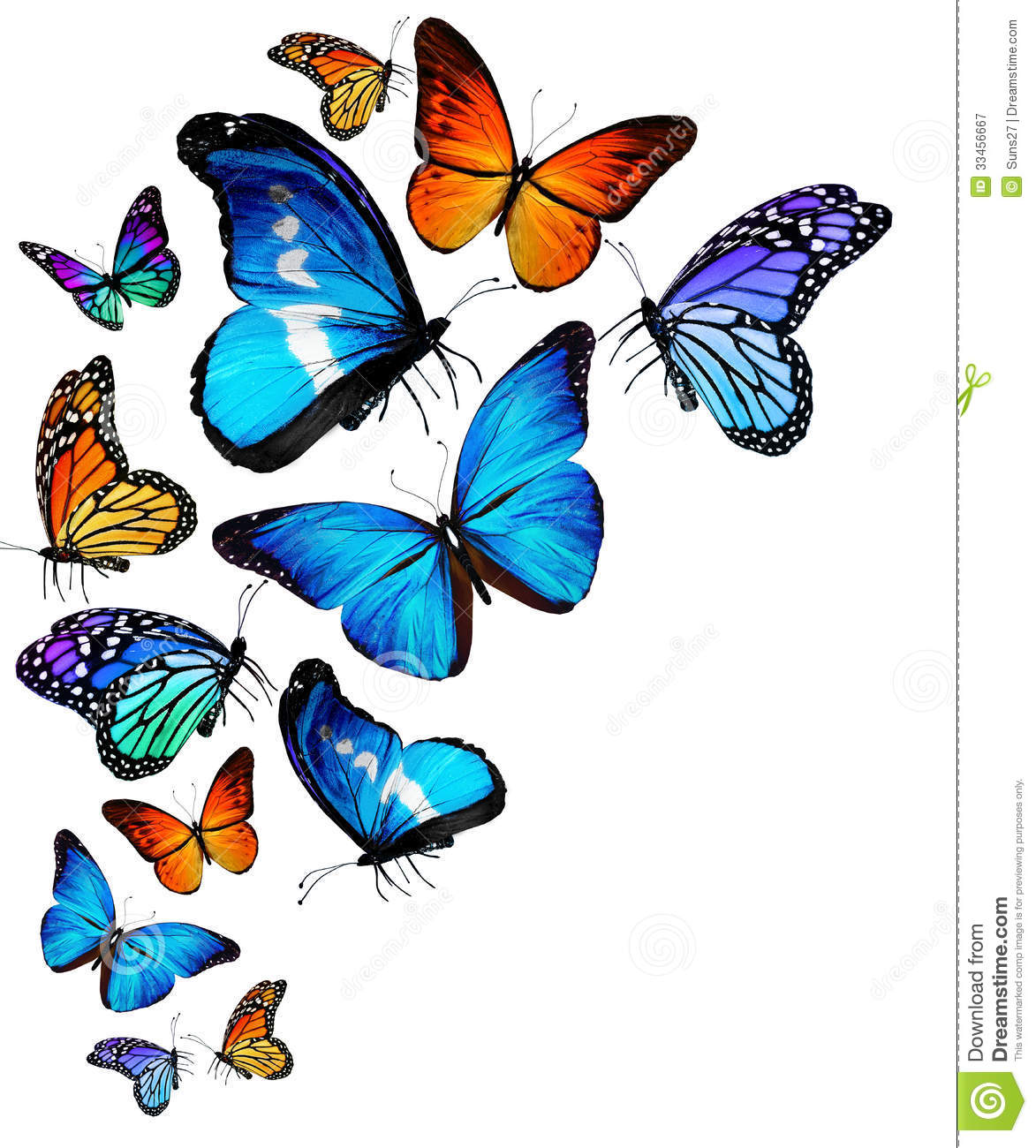 Many Different Butterflies Flying Stock Illustration Illustration Of Spring Autumn 33456667