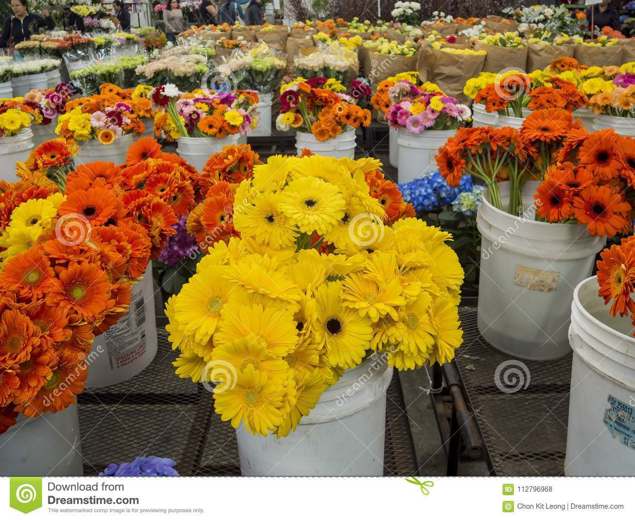 Many different kinds of flowering selling
