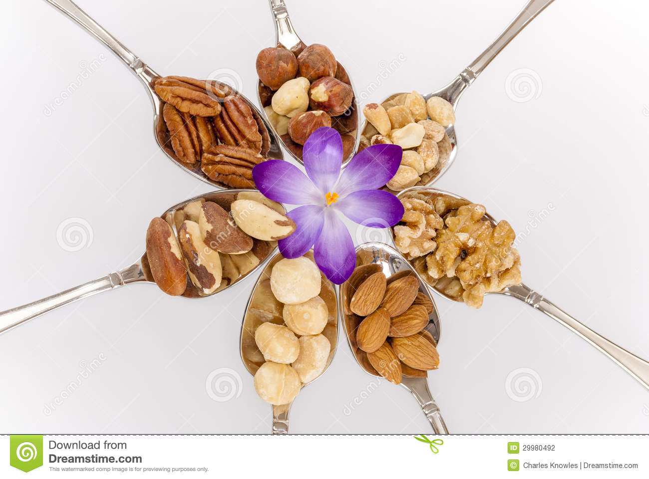 Different Nuts On Spoons With A Flower Stock Photo - Image