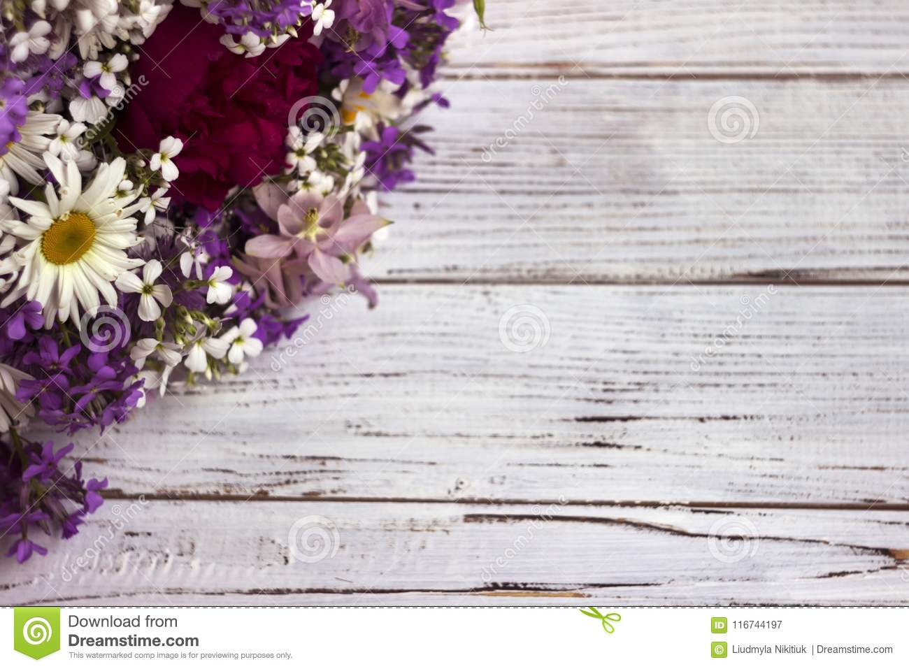 Many Different Types Of Flowers Purple And Violet Phlox White