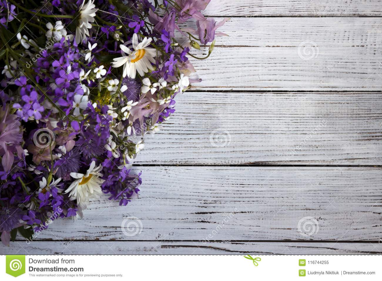Many different types of flowers purple and violet phlox white many different types of flowers purple and violet phlox white daisy pink bells izmirmasajfo