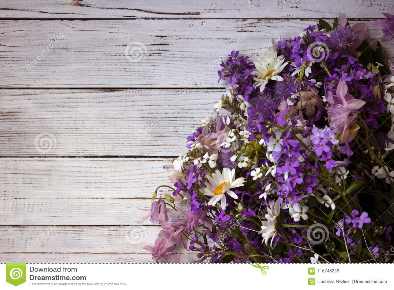 Many different types of flowers purple and violet phlox white download many different types of flowers purple and violet phlox white daisy pink izmirmasajfo