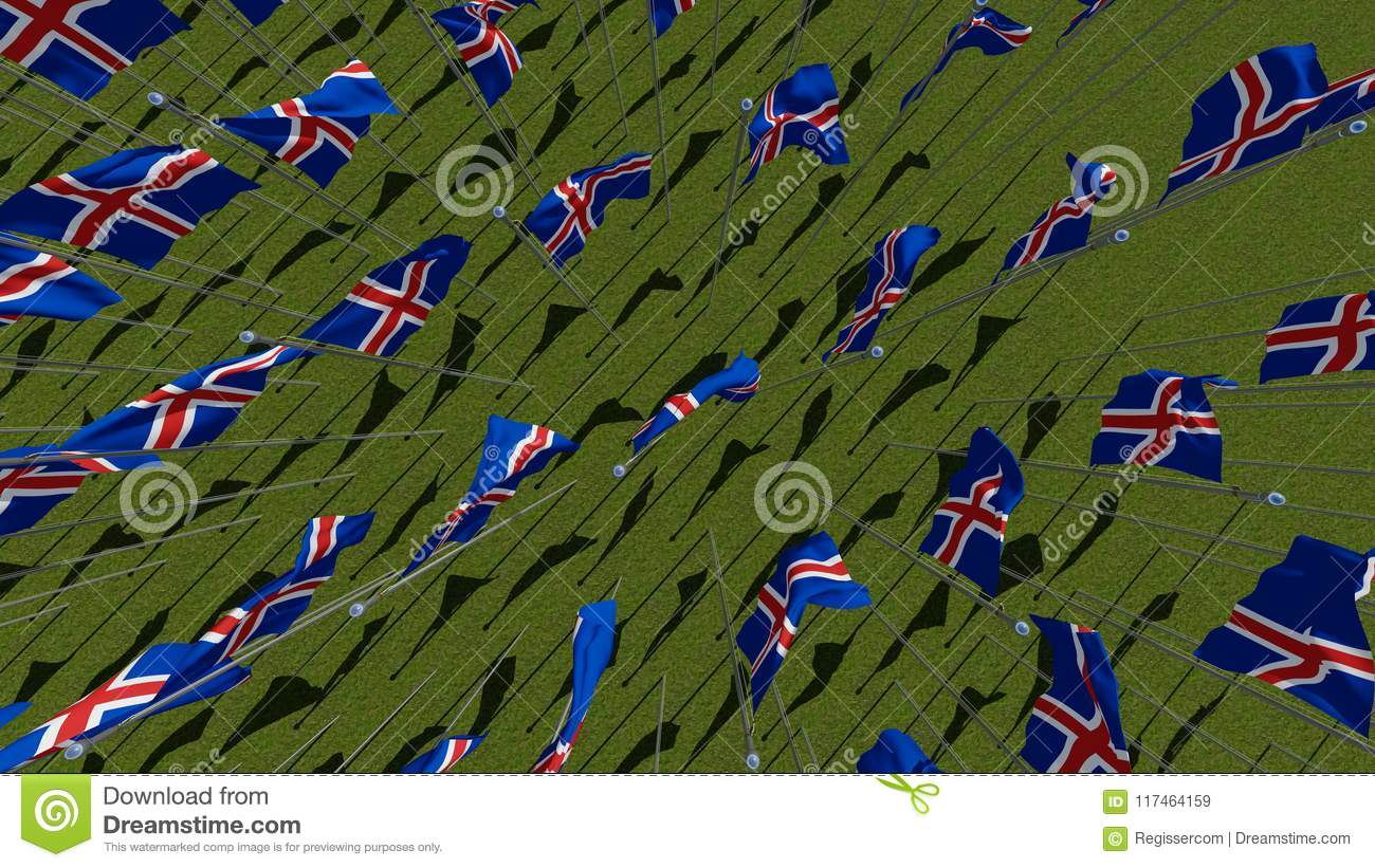 Many national flags of the Iceland waving on wind in green field.