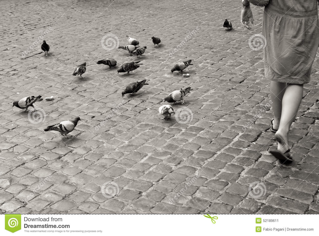 Life Spelled In Cobble : Many pigeons on empty beach royalty free stock photo