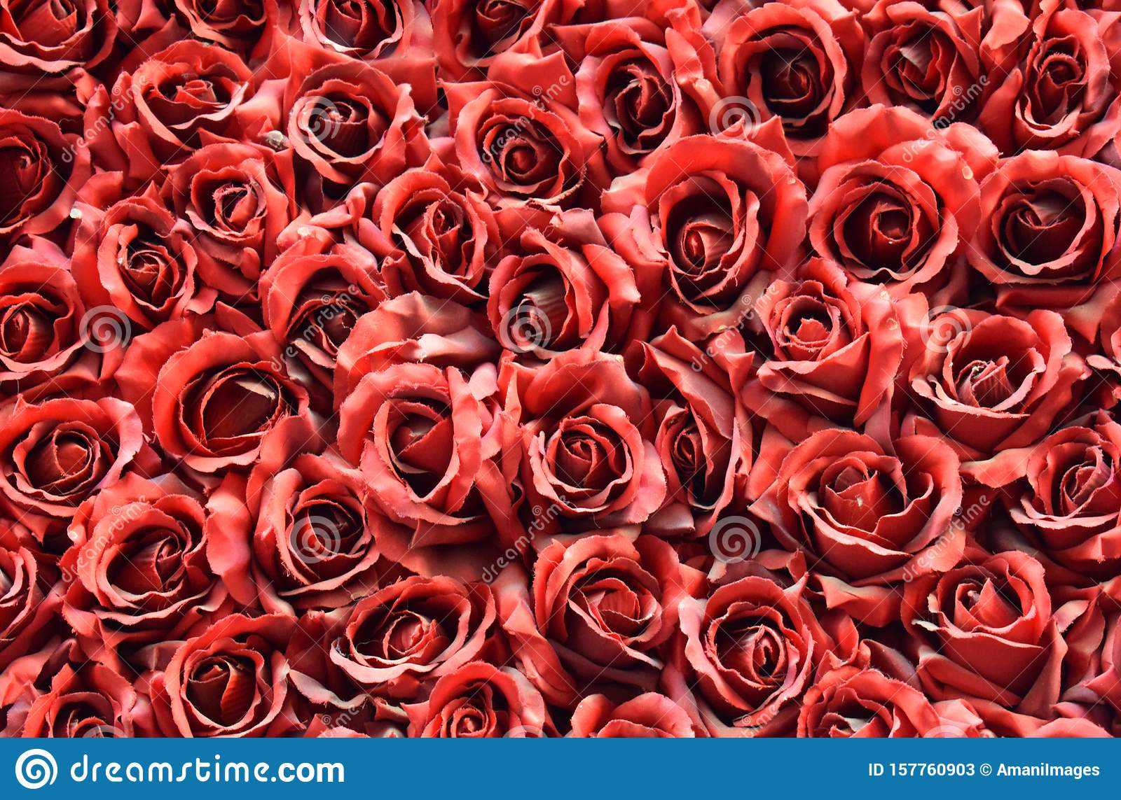 Many red roses collage wallpaper