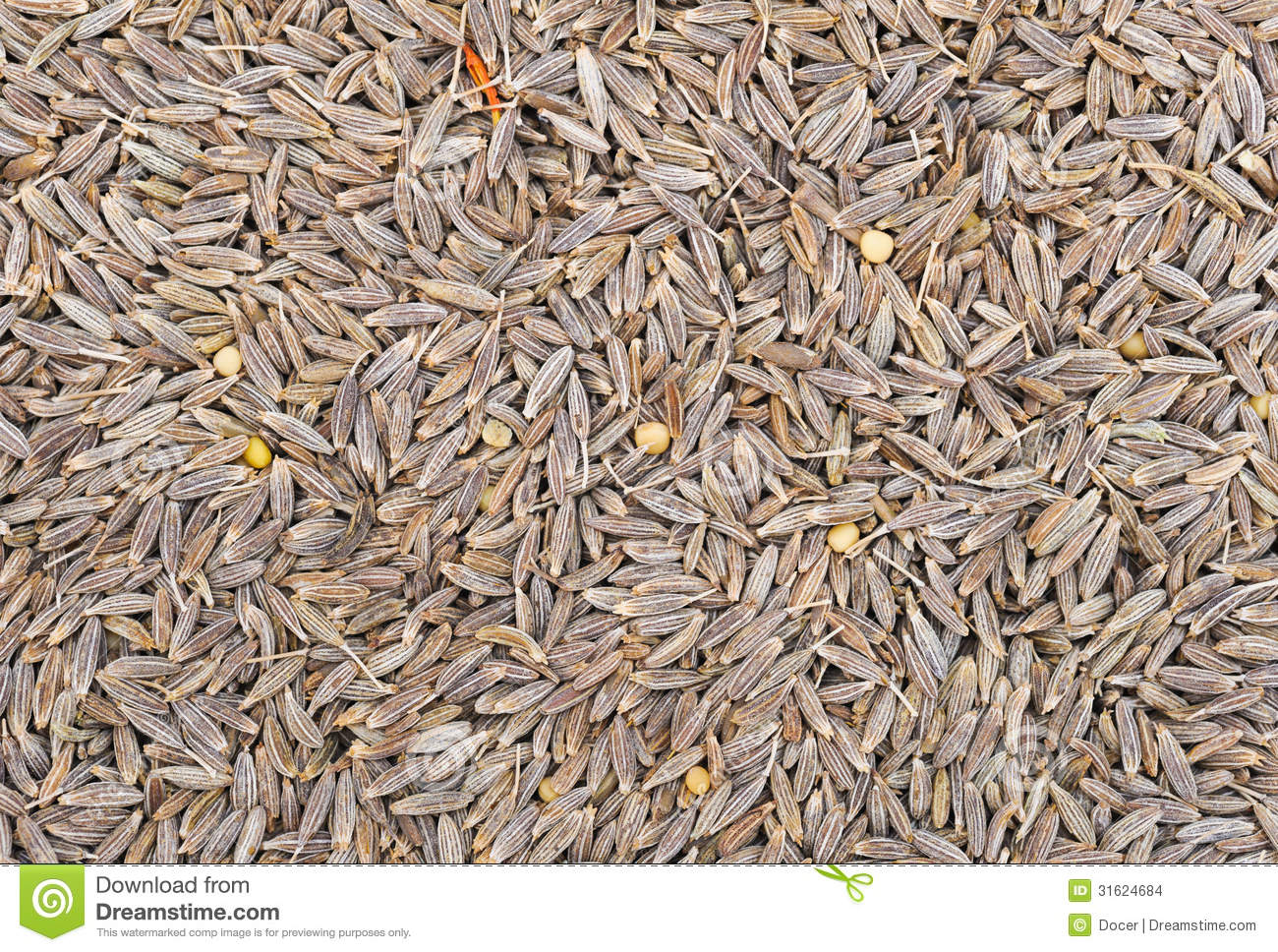 Many small dried cumin seed. Food seasoning backgrounds