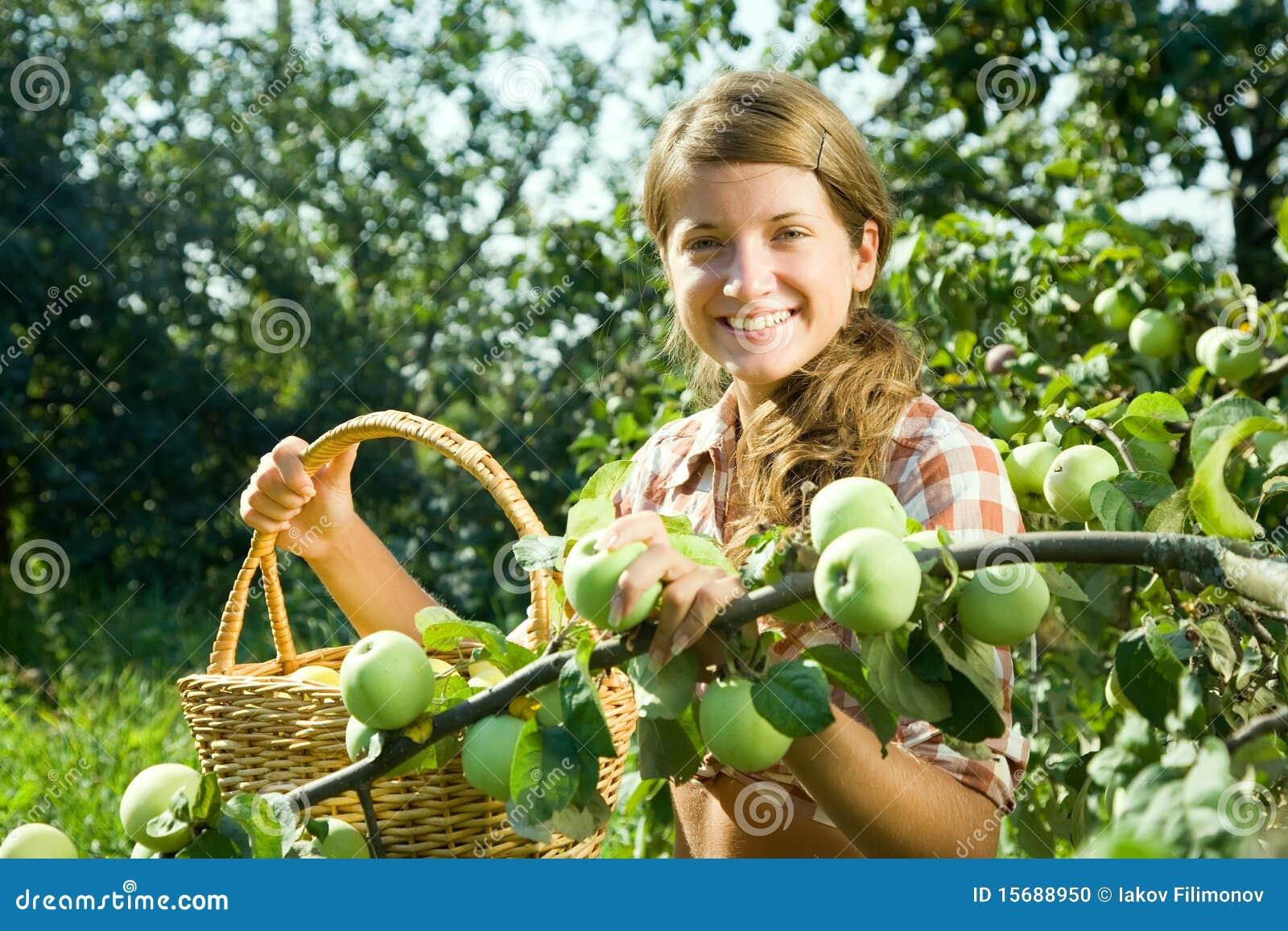 Manzana joven de la cosecha de la muchacha de granja