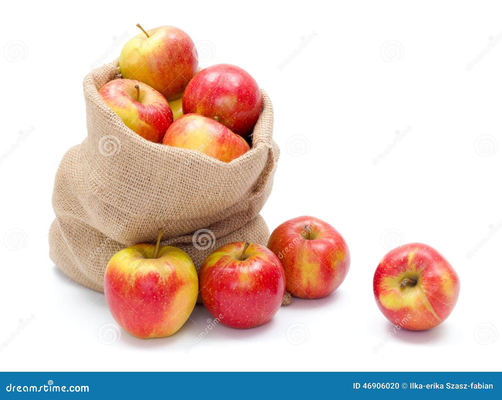 Manzanas maduras en saco de la arpillera stock photos 10 - Saco arpillera ...