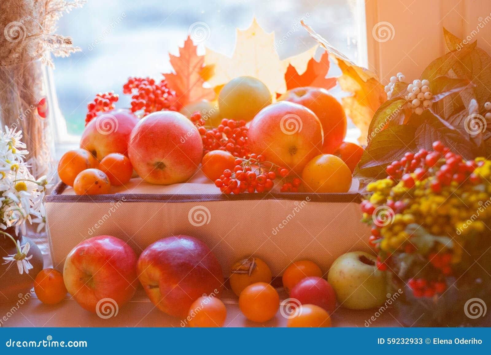 Download Manzanas Maduras Rojas Con Las Hojas De Otoño Y El Serbal Imagen de archivo - Imagen de otoño, fruta: 59232933