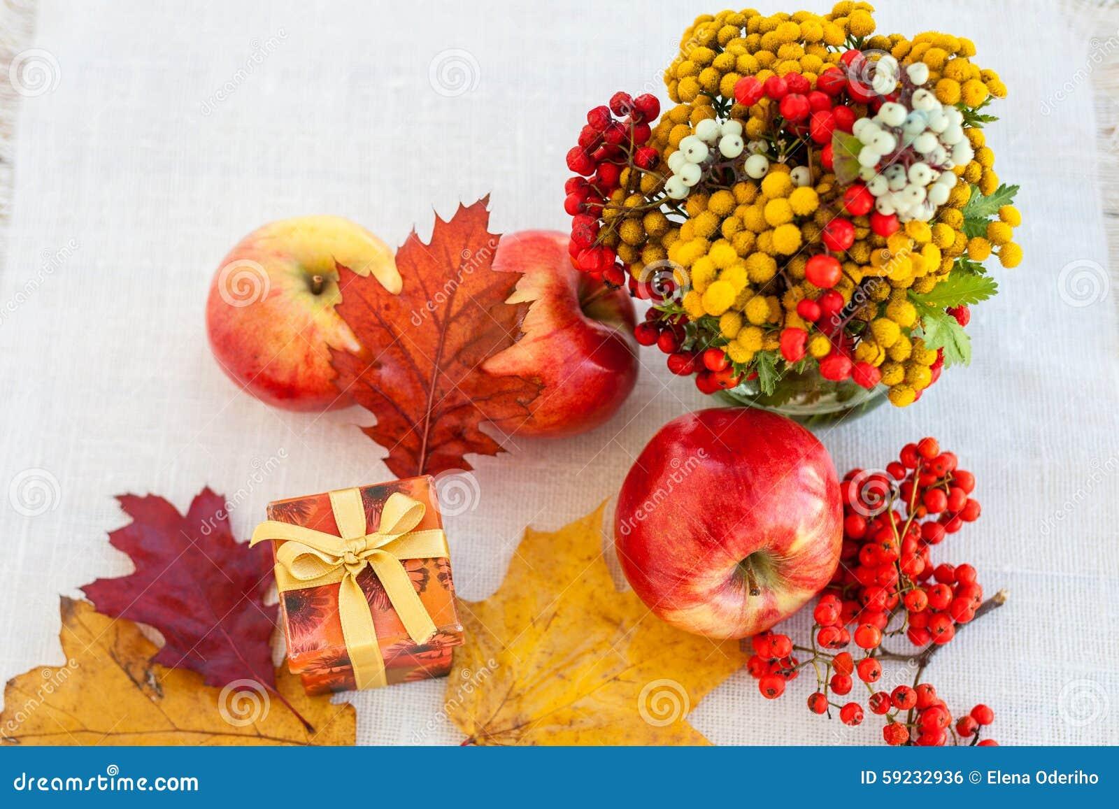 Download Manzanas Maduras Rojas Con Las Hojas De Otoño Y El Serbal Foto de archivo - Imagen de verde, frutas: 59232936