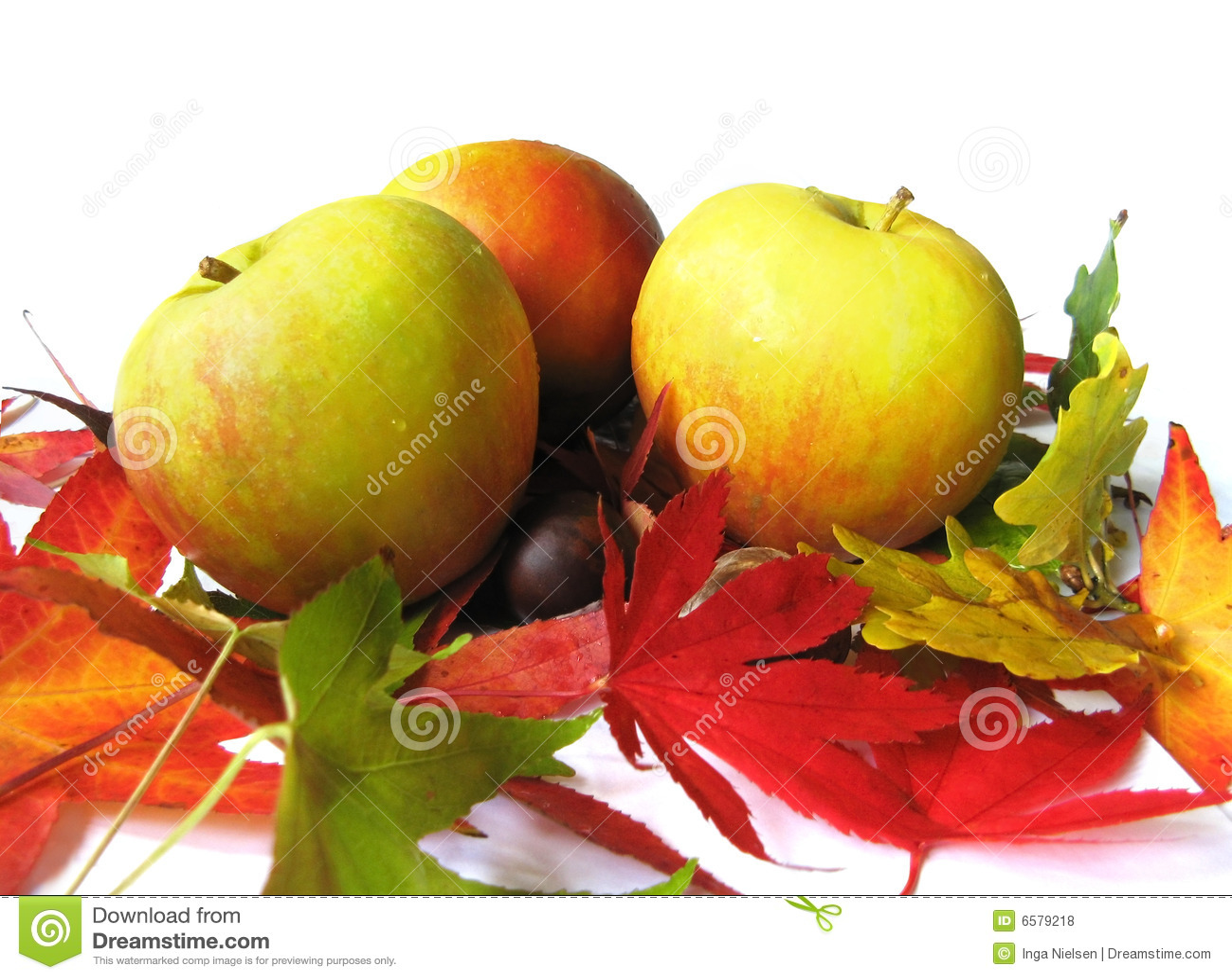 Manzanas y hojas de otoño