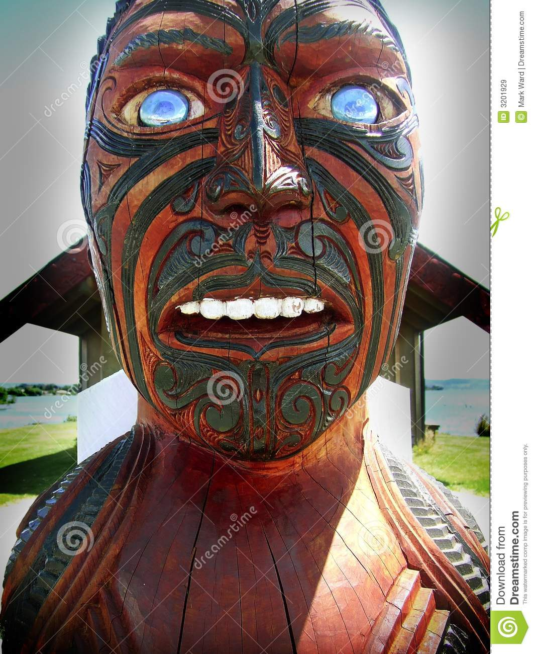 What Is Maori Culture: Maori Culture Royalty Free Stock Images