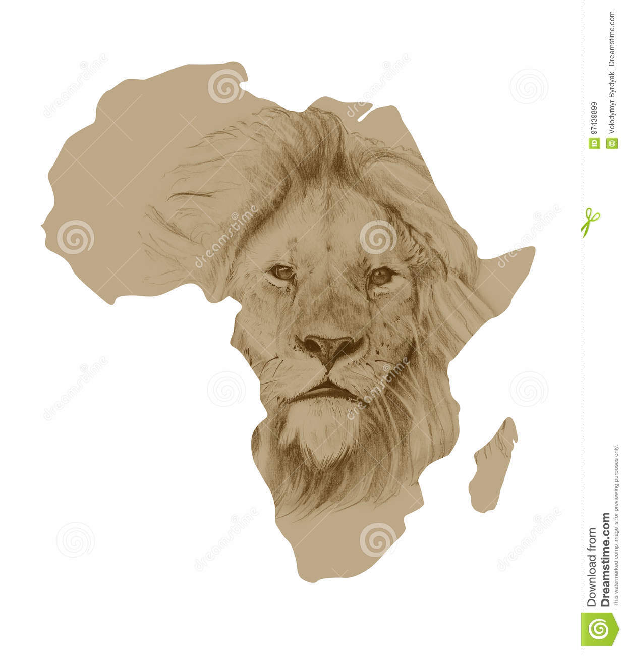 Map Of Africa With Drawn Lion Stock Illustration   Illustration of