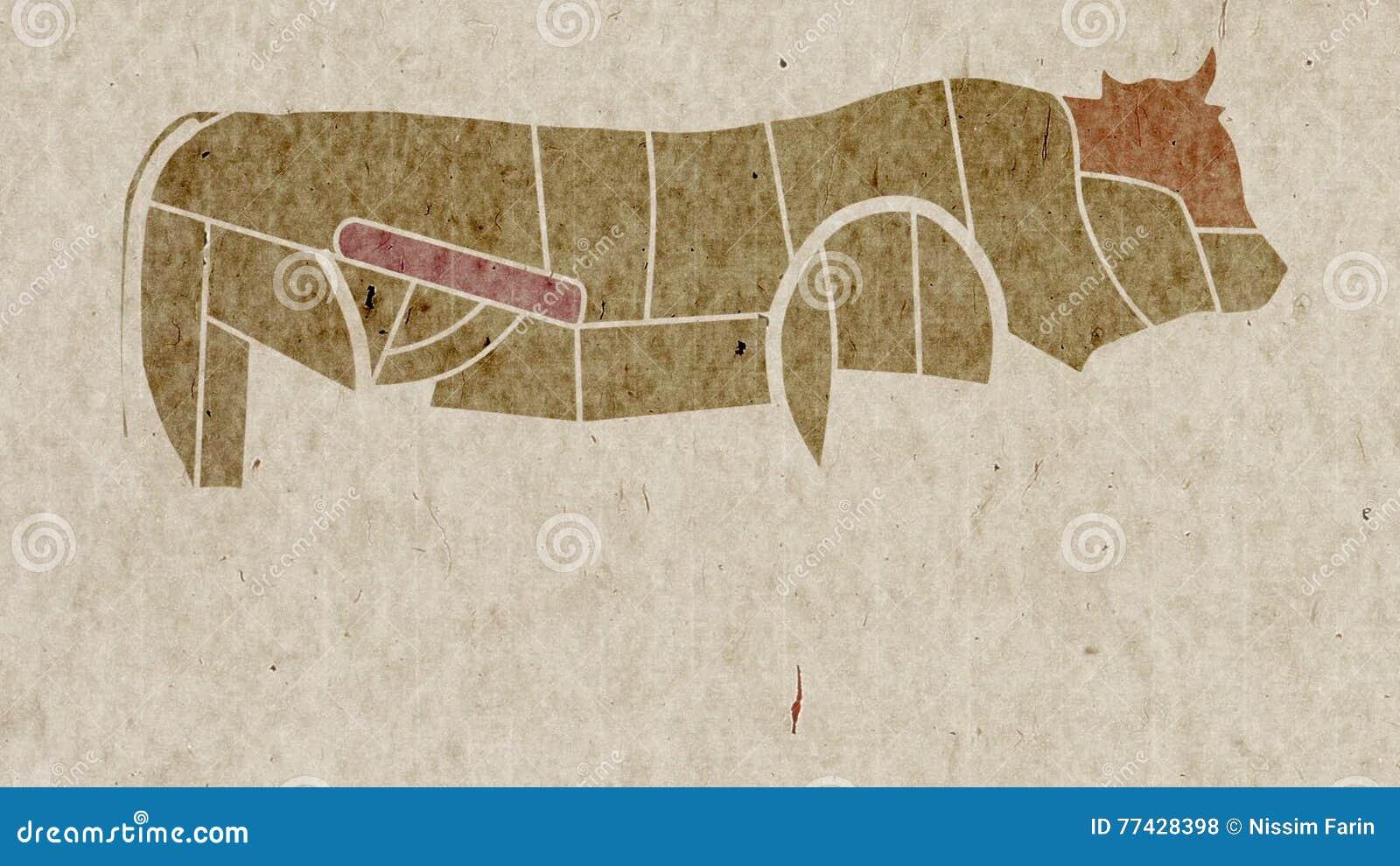 Mapa De La Anatomía De Las Partes Del Cuerpo De La Vaca Para Los ...