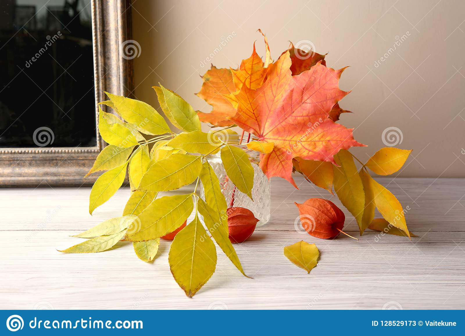 Maple And Ash Tree Leaves In Vase And Dried Plants Chinese Lantern on chinese flying lanterns, lace aloe plant, chinese sky lanterns, chinese red plant, flowering maple plant, bleeding heart plant, chinese rain tree, verbena plant, rhododendron plant, baloon flower plant, climbing nightshade plant, chinese tomato plant, chinese paper lanterns, chinese money plant, bittersweet plant, foxglove plant, abutilon plant, bird of paradise plant, lupine plant, snapdragon plant,