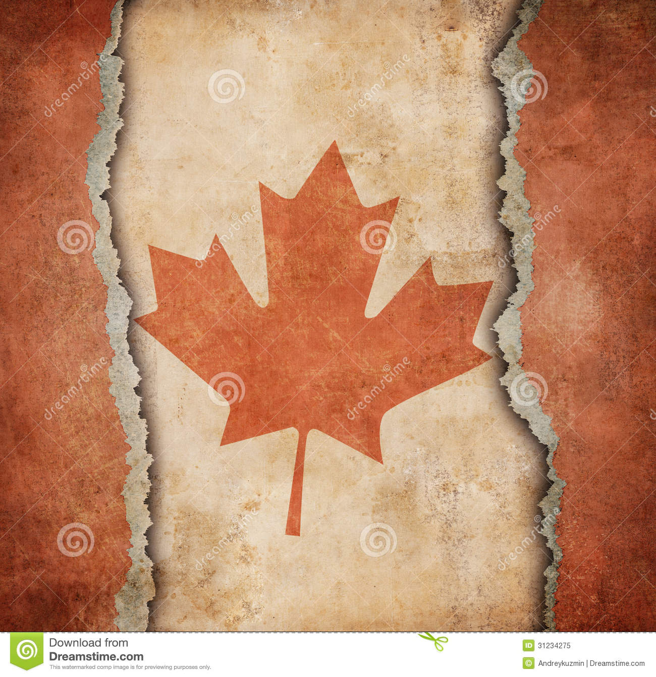 the maple leaf flag of canada on torn paper royalty free stock