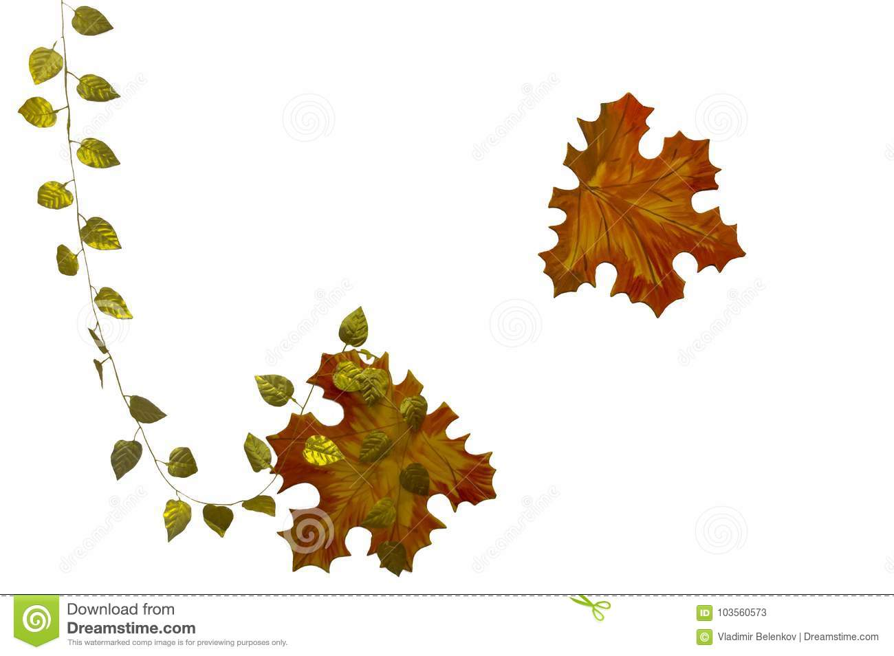 Maple leaf with frame 2 stock image. Image of flying - 103560573