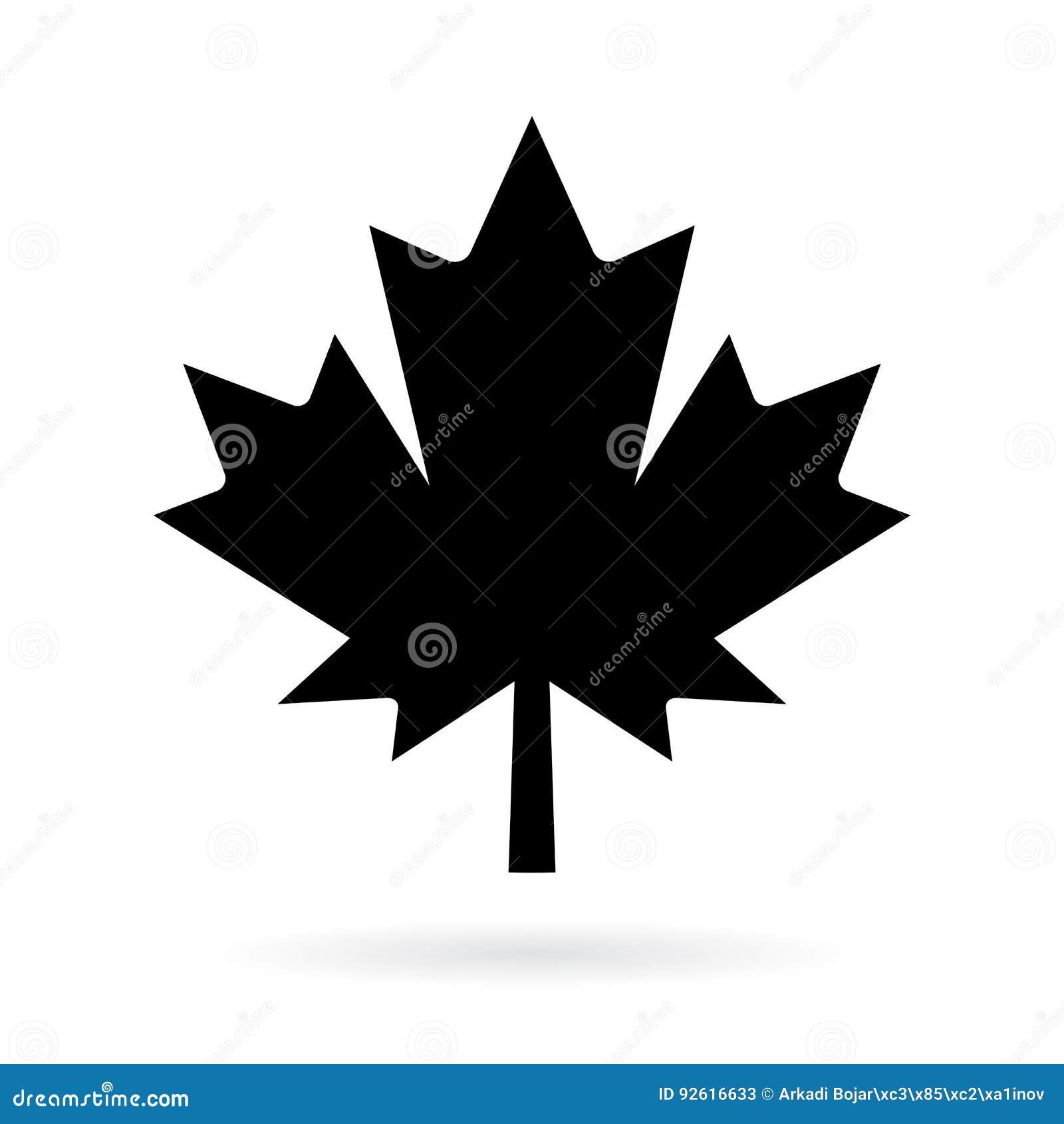 Maple Leaf Vector Pictogram Stock Vector Illustration Of