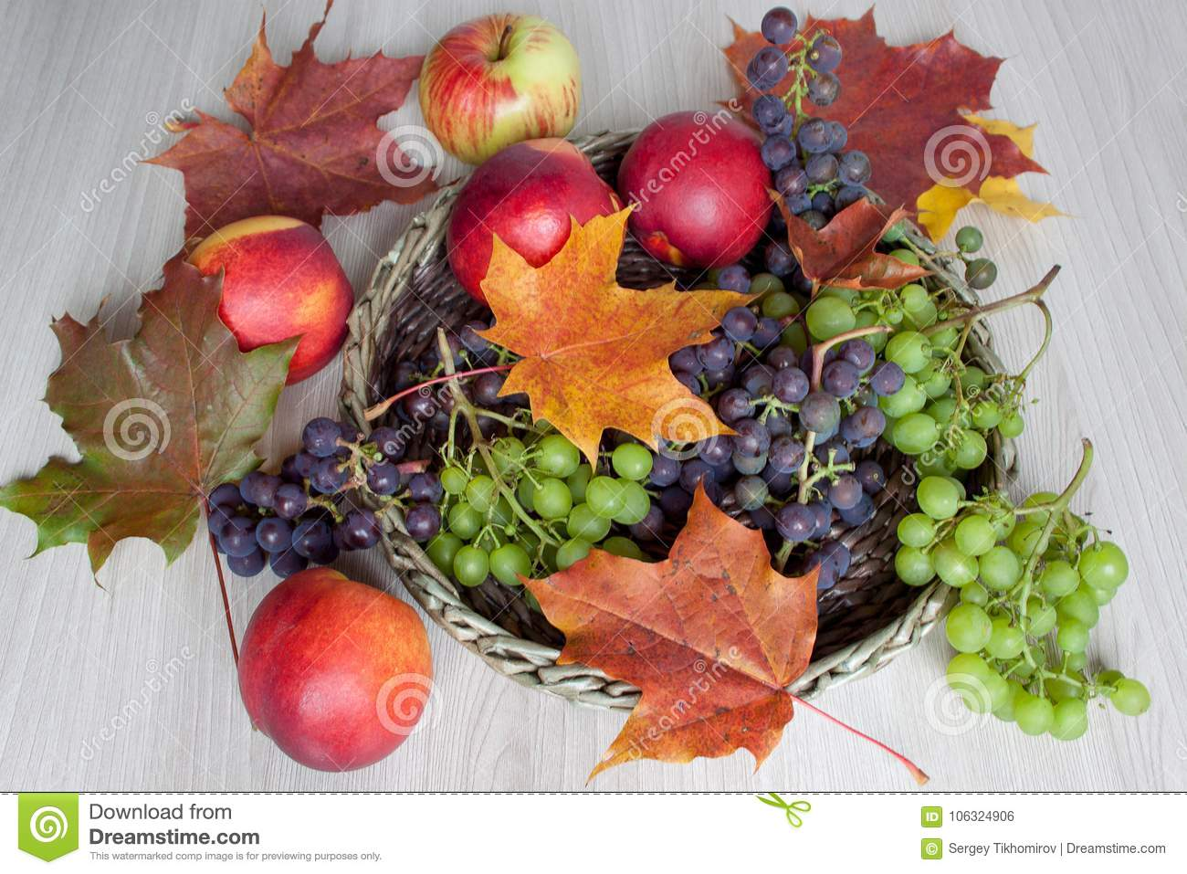 Maple Leafs Nectarine Grapes And Other Gifts Of Nature Stock Photo Image Of Fruit Nature 106324906