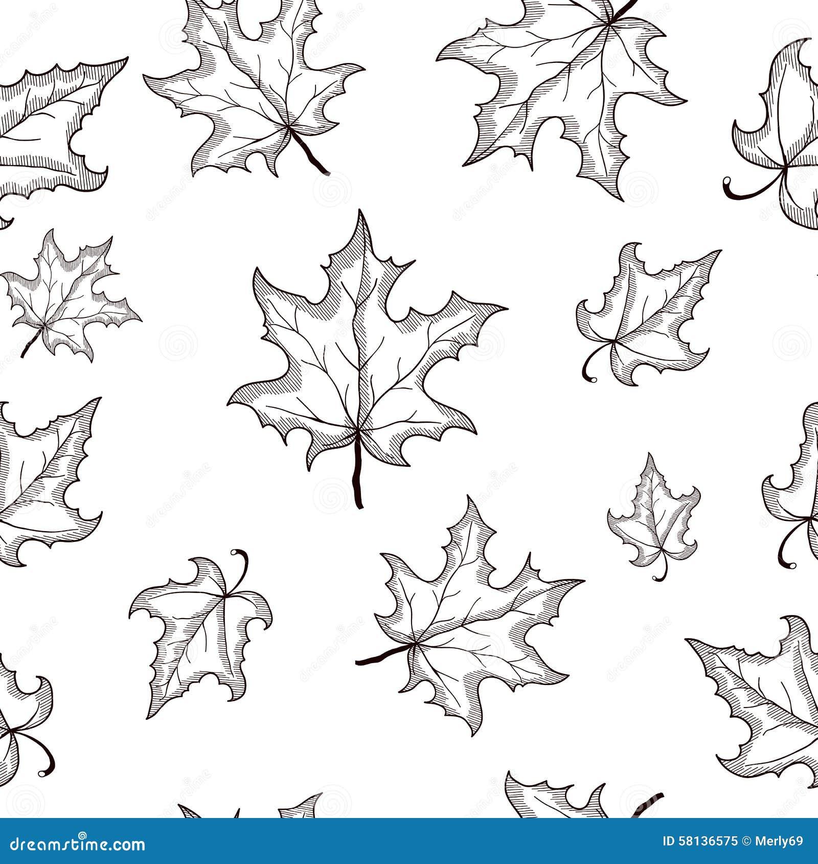 leaf black and white - photo #30