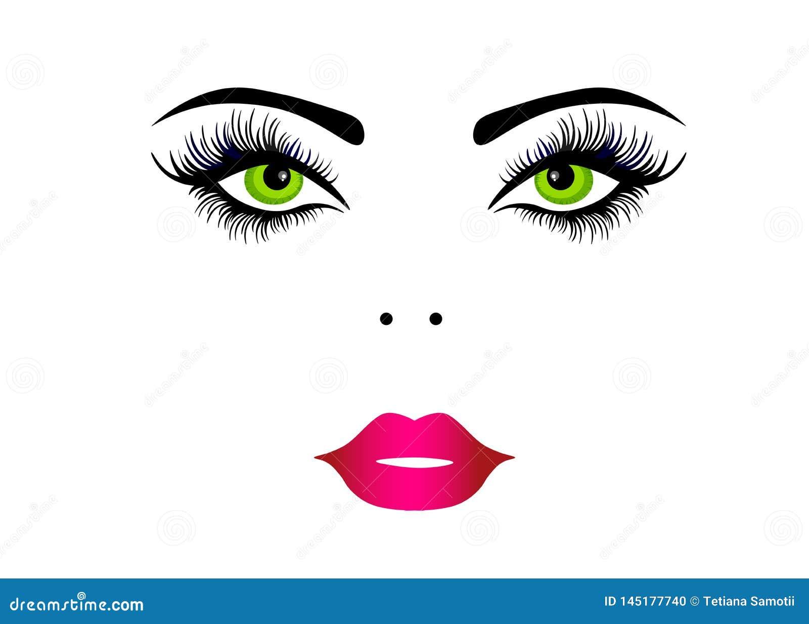 Maquillaje que lleva de la cara hermosa de la mujer de la web Ilustraci?n EPS 10 del vector