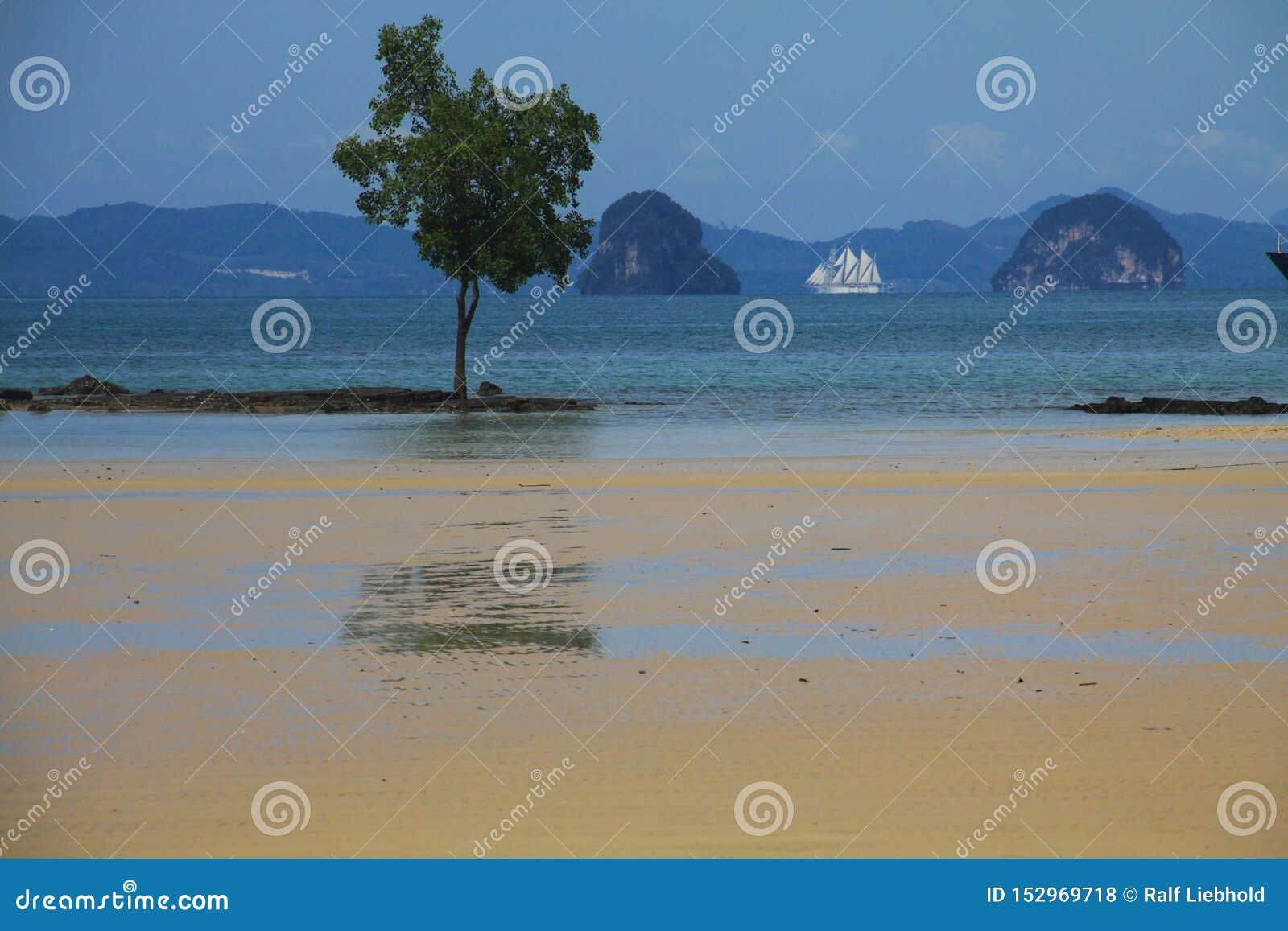 Maré baixa no litoral de Thailands com formação de rocha, árvore e navio de navigação no fundo, Ao Nang, Krabi