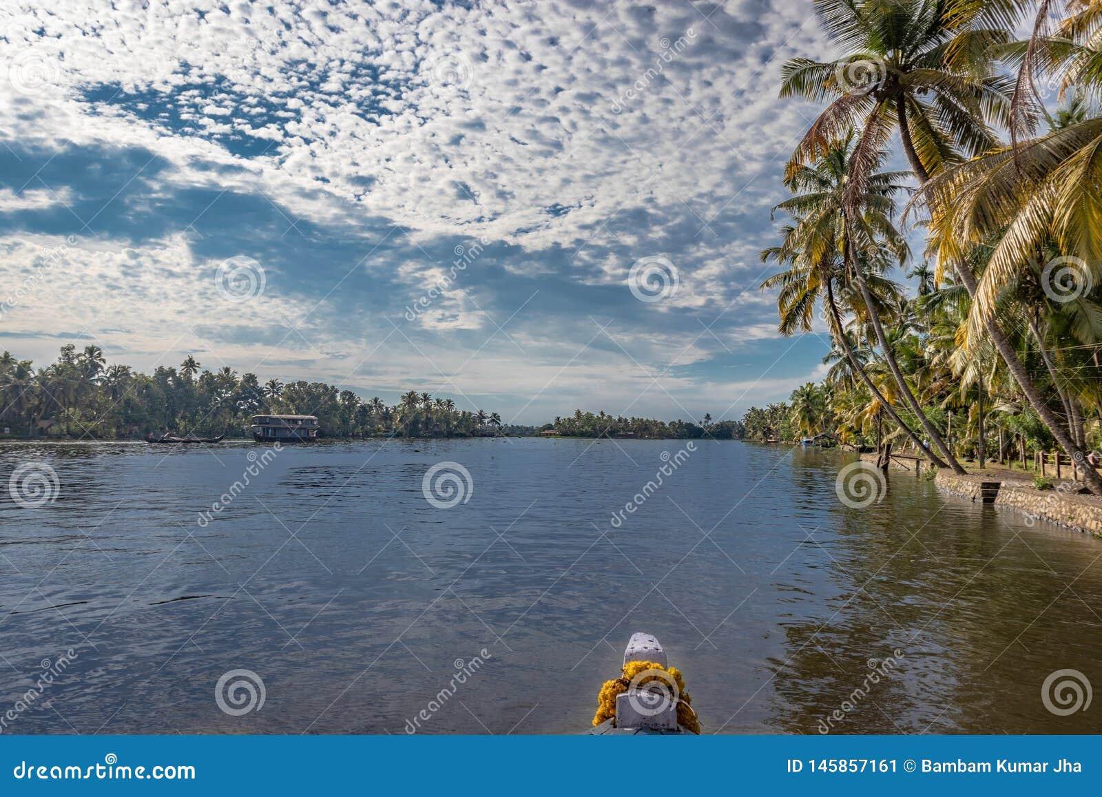 Maré do mar com a palmeira do barco