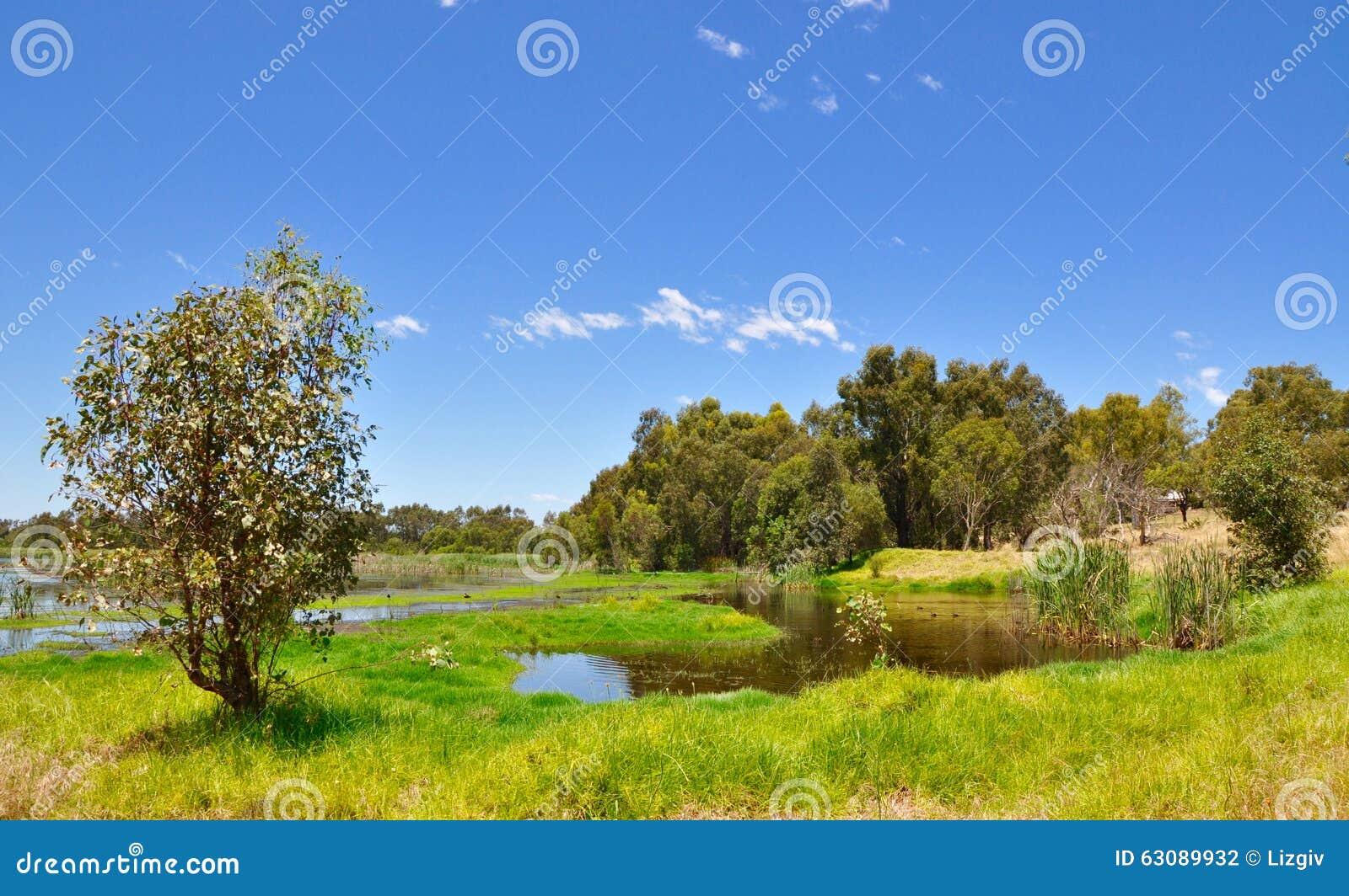 Download Marécage Mudflats photo stock. Image du sous, flotter - 63089932