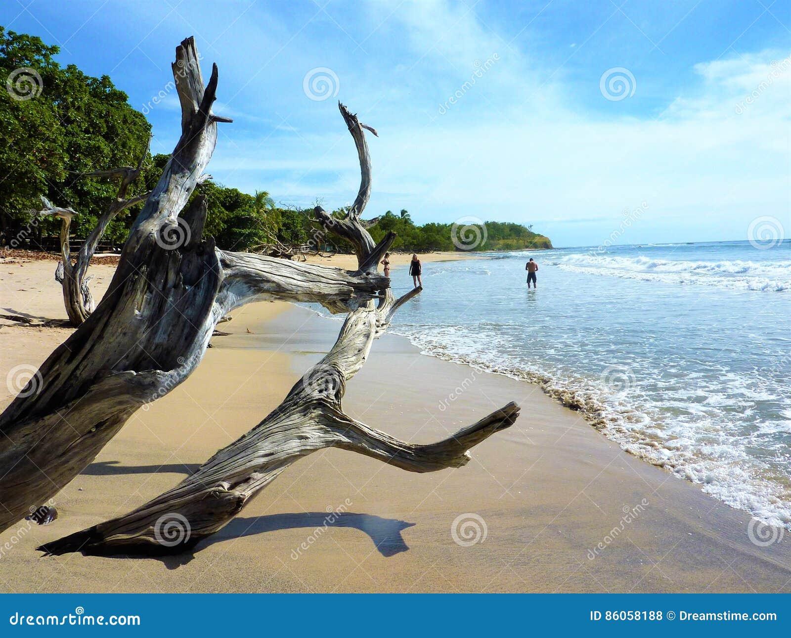 Marés de Costa Rica