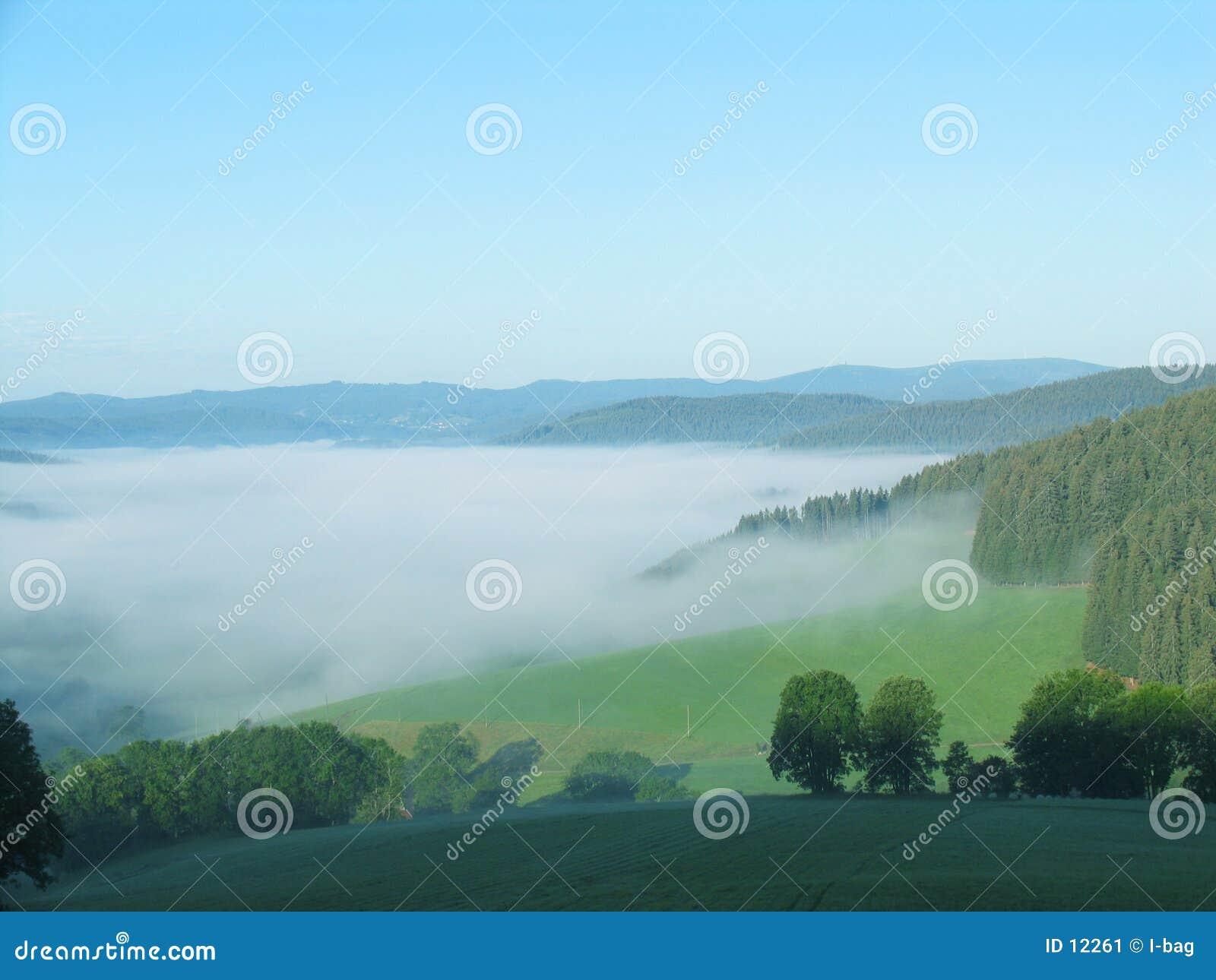 Mar de la niebla en las montañas