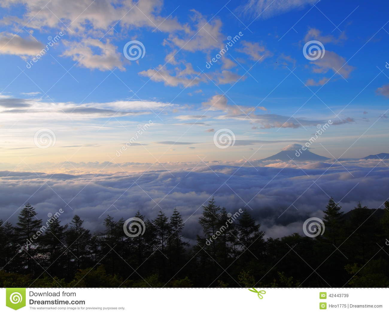 Mar de nubes y del Mt fuji